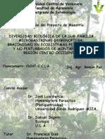 Presentación Proyecto2008.1.
