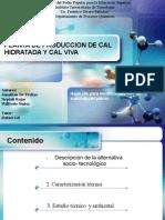 70308099 Planta de Produccion de Cal Hidratada y Cal