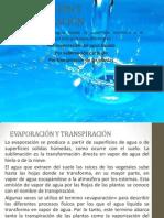 presentacion EVAPORACIÓN Y TRANSPIRACIÓN