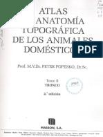 Atlas de Anatomia Topografica de Lo Animales Domesticos - Tomo 2