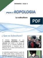 6 subcultura
