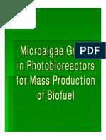 Algae to Energy_powerpoint