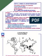 Aula 01-Problemticas Globais II