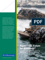58889480 IEA ExCo64 Algae the Future for Bioenergy Summary and Conclusions