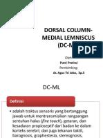 Traktus Dorsal Column-medial Lemniscus