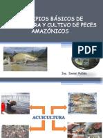 principios basicos de acuicultura y cultivo de peces amazonicos.pdf