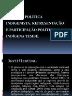 Estado e política indigenista