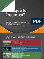 Porque Lo Organico