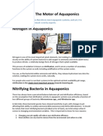 Nitrification- The Motor of Aquaponics