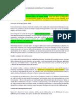 EL PARADIGMA SOCIOLÓGICO Y SU DESARROLLO.docx