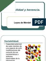 Variabilidad y Herencia Liceo Comercial