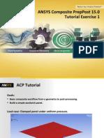 ACP Tutorial Ex1