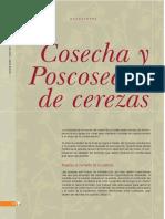 Cosecha y poscosecha de cerezas INTA.pdf