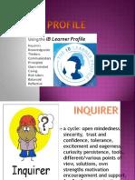 Reflection Ib Profile