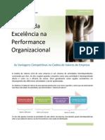 A_busca_da_excelência_na_performance_organizacional