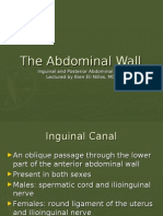 The Abdominal Wall Part Two