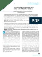 ACT. Fundamentos, características y evidencia. Luciano y Valdivia