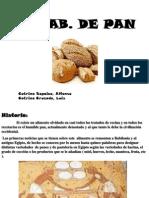 Elab. de Pan Sapaico