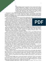 Baran Bogdan - Heidegger i Powszechna Demobilizacja