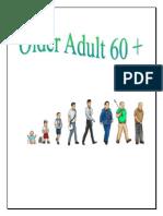 Older Adult HC