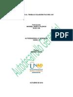 Aporte Al Trabajo Colaborativo Nro. 001 Docx