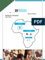 pr campaign final report december 15 2013-3