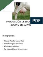 PRODUCCIÓN DE LECHE EN EL PAÍS