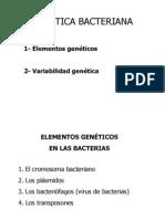 Genes microbianos