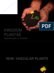 Biology Kingdom Plantae