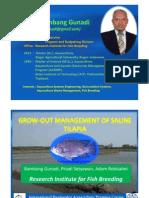 Tilapia Grow Out Management FAO Sukamandi