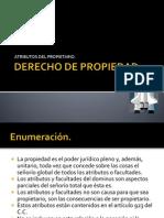 Atributos Del Propietario en El Derecho de Propiedad.