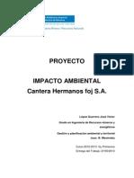 Trabajo Final Impacto Ambiental