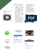 Leaflet Katarakhv