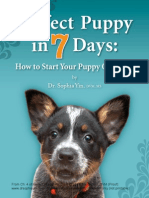 Perfect Puppy in 7 Days - Potty Training