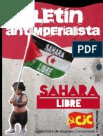 Boletín antiimperialista - Sahara libre