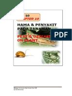 Hama Dan Penyakit PDF