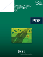 Boston Consulting Group - Brazil Confronting the Productivity Challenge