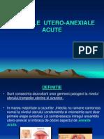 Infectiile Utero-Anexiale - 1