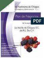 Plan de Negocios La Morita de Chiapas, S.a. de R.L. de C.v.finaL
