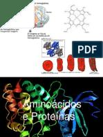 1ª Aula- Aminoacidos e Proteinas