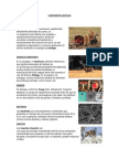 Componentes Bioticos y Abioticos