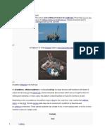 Oil platform.doc