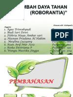 Roborantia