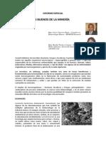 LOS MICROBIOS BUENOS DE LA MINERÍA 1.pdf