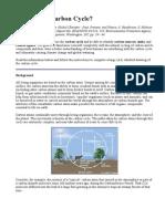 Carbon Cycle Work 19 Dec 2013