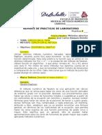 FORMATO_REPORTE_PRACTICAS