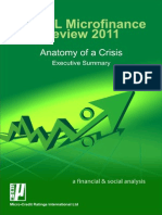 Executive Summary Review 2011 m Cril