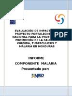 Informe Final Malaria