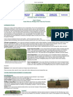 Cover Crop Overview