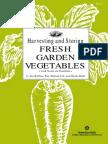 Harvesting and Storing Fresh Garden Vegetables